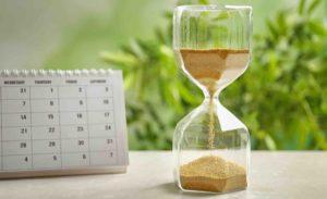 Kalender und Sanduhr vor Pflanzen